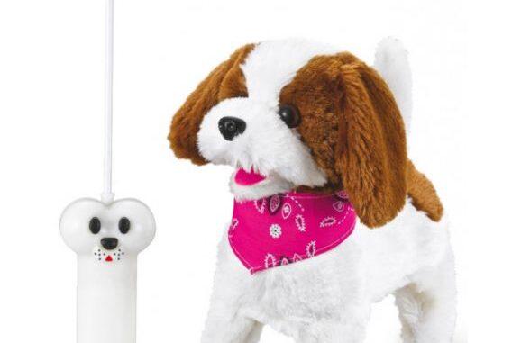Radiostyrd hund bäst i test